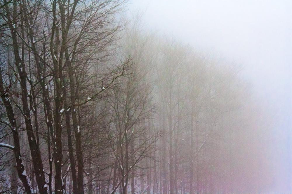 lumessa 8